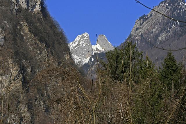 jumelles randonnée montagne